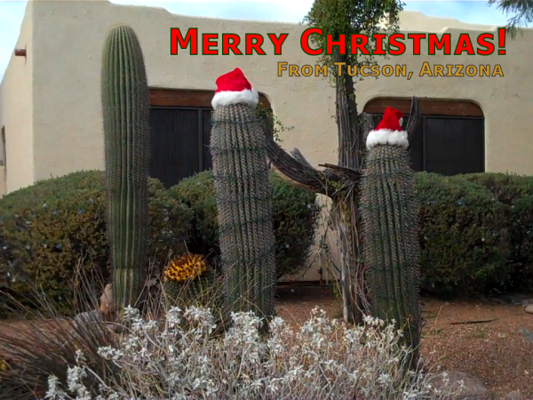 MerryChristmasFromTucson600